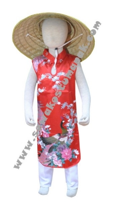 kostum negara vietnam  large