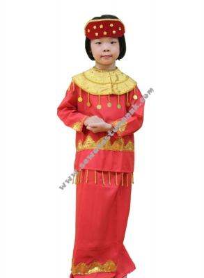 pakaian adat palembang  large